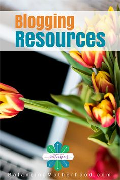 Blogging Resources - a complete list of resources to get your blog working for you. Hosting, email management, photo tools, plugins, and the best theme ever!