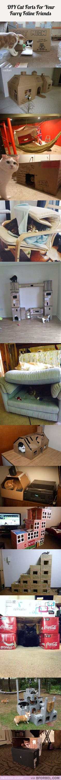 14 DIY Cat Forts For Your Furry Feline Friends…