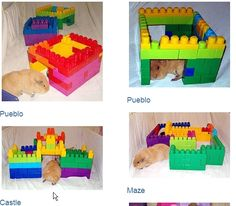 Use Lego's to make houses for the piggies