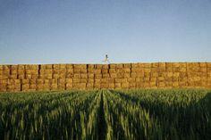 Ryan McGinley  Haystacks (Grassy)  2012 48 x 72 inches
