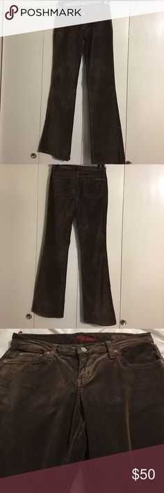 """New Blue Cult """"Kate"""" Brown Velour Flare Jeans 27 Size 27"""" Waist 34"""" Hips 32 1/2"""" Inseam. Brown Velour Kate Flare Leg Jeans. Style# AW1215V96X Cut# 600923. Cotton and Spandex. Brand new without tag. Blue Cult Jeans"""