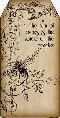 Bountiful Heirlooms: Free Printables: Bee and Beekeeping Tags vintage paper gift tag Smash Book, Tarjetas Diy, Bee Art, Bee Happy, Happy Life, Save The Bees, Bees Knees, Queen Bees, Bee Keeping