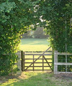 pasture gate... I love the way the light calls to us in the background.  This is what I strive for when I paint landscapes.