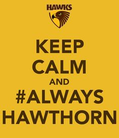 Hello Everyone, My Team I follow is the mighty Hawthorn F.C, u know they are the best team, and u know that saying I just will definitely be always hawthorn, coz John Kennedy Admires Me, and is also my inspiration. All my heros from the past really tell myself to be always hawthorn!