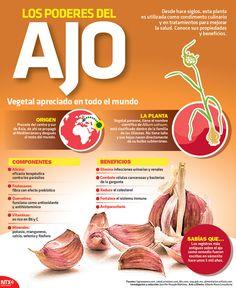 Conoce las propiedades y beneficios del #Ajo, vegetal apreciado en todo el mundo. #Infographic
