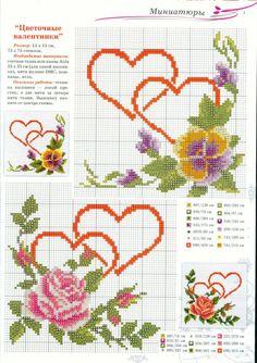 pansys violas violets 1/1