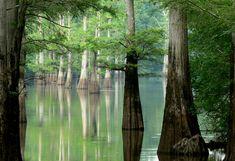 White River, Arkansas