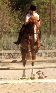 Daughter Samantha jumping at riding school
