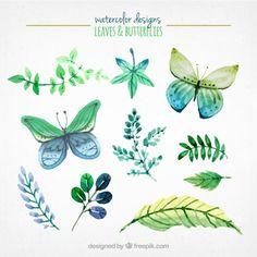 Aguarela folhas e borboletas Vetor grátis