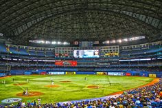 "Rogers Centre Toronto Blue Jays Adhesive Wall Graphic (24""x36"")"