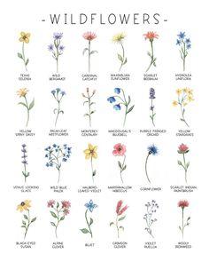 Tiny Flower Tattoos, Birth Flower Tattoos, Mini Tattoos, Cute Tattoos, Small Tattoos, Tatoos, Flower Tattoo Designs, Tattoo Fleur, Watercolor Flowers
