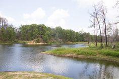 9. Lake Bastrop (Bastrop)