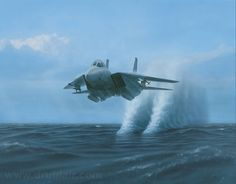 Tomcat by Dru Blair  http://www.drublair.com/tomcat1.html  #aviation #art