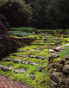 Moss Garden. Kanske en kombination för utescenen av kilastenar som finns på framtidens fixalista.