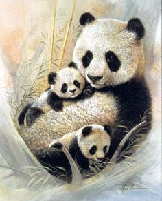 """(pandas are considered classic like brown bears) a precious, classic, full sized baby (a  little older than these cubs) classically shown with a classic mother panda (average size on the fuller side height and mass ~ classic positioning) with his classic father (also classically positioned ~ also average on the bigger side) ~ timeless ~ classic ~ full classic (solidly """"neutral"""") setting similar to this one ~ subtly highly artistic OUR FAMILIES (ENTIRE INTERNATIONAL TRIBE) MY GENERATION"""