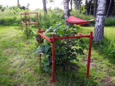 Några sättpinnar målade med falufärg och vips hade vi buskstöd till hallonen och vinbärsbusken.