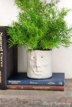 Clay Head Planter - Stacy Risenmay Clay head planter - easy to make! Face Planters, Diy Planters, Planter Pots, Clay Planter, Clay Projects, Diy Craft Projects, Craft Ideas, Fun Ideas, Project Ideas