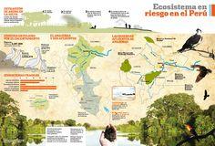 Ecosistema+en+Riesgo+en+el+Perú.jpg (1231×836)