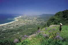 Views over Wollongong, New South Wales.