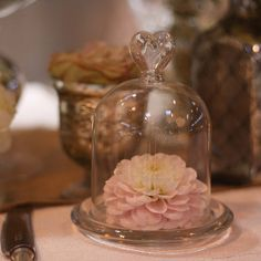 mini glass dome bell jar by the wedding of my dreams | notonthehighstreet.com