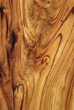 WW95: Wood Texture: Camphor Laurel | Flickr - Photo Sharing!
