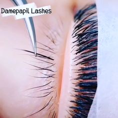 Under Eye Lash Extensions Applying. You can learn how to use the under eye lashes Bottom Lash Extensions, Eyelash Extensions Styles, Applying False Eyelashes, Applying Eye Makeup, Bottom Eyelashes, Longer Eyelashes, Eyelash Extension Kits, Makeup At Home, Best Lashes