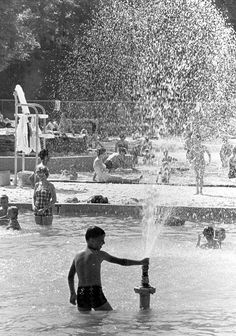 Rainbow Lake was a large entertainment complex with pool, skating rink, and the famous Terrace Room Memphis Tennessee, Rhythm And Blues, Down South, Back In The Day, Old Pictures, Historical Photos, Mississippi, Funniest Cartoons, History