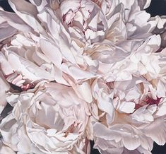 thomas darnell- peonies close-up wall mural Thomas Darnell, Big Flowers, Beautiful Flowers, Beautiful Things, Artist Wall, Contemporary Wallpaper, Mural Wall Art, Art Google, Peonies