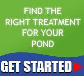 Bioverse Natural Bird Bath Water Cleaner, Algae Control