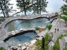 natural looking lake facing pool looks like a great hideaway. Nice plants on the cliff to soften it a bit and the pine trees give it a bit of privacy.