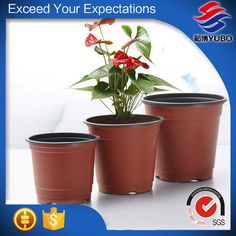 Plastic Flower Pots, Terracotta, Planter Pots, Flowers, Plastic Planters, Plastic Plant Pots, Royal Icing Flowers, Flower, Terra Cotta