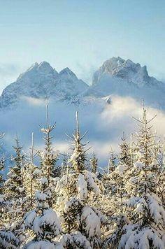 Pinterest ~ graceegabriel Winter Songs, Winter Time, Winter Season, The Beautiful Country, Beautiful World, Tatra Mountains, Winter Magic, Snow Scenes, Winter Beauty