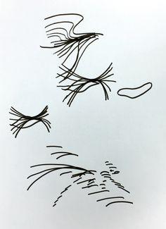하늘위로 날아가는 새 때들의 날갯짓