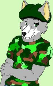 a wolf fursona