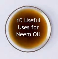 Neem oil is very versatile and valuable in the world of alternative health. read on to learn of 10 useful uses.