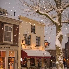 Christmas Feeling, Cozy Christmas, Christmas Time, Best Seasons, Four Seasons, Winter Scenery, All I Ever Wanted, Christmas Aesthetic, Baby Winter