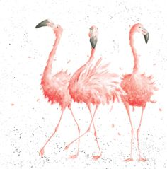 Pretty Pink Flamingo Z008 - 'Pink Ladies' | Wrendale Designs