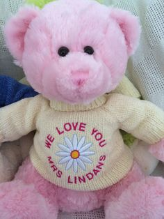This is a great idea for a teacher gift to thank them for a great school year.    A personalised teddy bear
