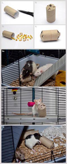 Cats Toys Ideas - Rat toy tutorial - Treat Box (Pinata) (by LadyTara on deviantART) - Ideal toys for small cats Diy Rat Toys, Pet Toys, Diy Gerbil Toys, Diy Mouse Toys, Diy Bunny Toys, Diy Degu Toys, Diy Hedgehog Toys, Diy Chinchilla Toys, Diy Guinea Pig Toys