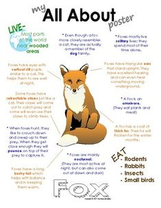 My All About Foxes Book - (Woodland, Forest, North American Animals). Also available in a bundle pack with Brown Bear, Woodpecker, Raccoon and Chipmunk. Preschool Activities At Home, Preschool Science, Preschool Lessons, Fox Craft Preschool, Fox Facts For Kids, Fun Facts About Animals, Facts About Foxes, Forest Animals, Woodland Animals