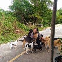 #dogalize Da de comer al perro callejero, él la agradece con regalos #dogs #cats #pets