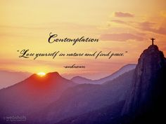 Compassion is the road that leads to Gods heart