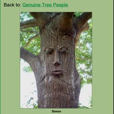 Tree people faces!!  First spring purchase?