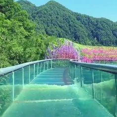 A beautiful ride in the Gold Dragon Waterworld China. Beautiful Places To Travel, Romantic Travel, Water Slides, Amazing Nature, The Good Place, Travel Inspiration, Travel Destinations, Travel Photography, Nature Photography
