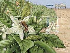 Prémio de Melhor do Mundo para Selo de apicultura nacional