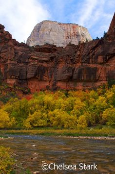 Great white throne in Zion National Park,. Mountain America, Zion Canyon, The Great White, Picnic Area, Photo Contest, Monument Valley, Chelsea, National Parks, Explore