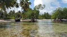 Playa El Portillo (Las Terrenas, Dominican Republic): Address, Marina Reviews - TripAdvisor