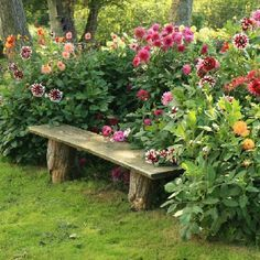 A simple rustic bench adds to the charm of this setting