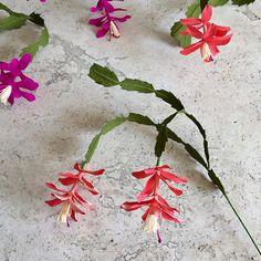 Crepe+Paper+Christmas+Cactus+Double+Bloom++Wedding+Flowers+