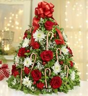 Holiday Flower Tree®Would make a nice Christmas Gift.